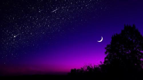 moon_tree_starry_sky_132139_1920x1080.jpg